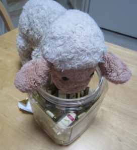 Lambie in chocolates